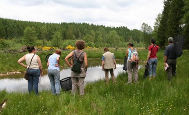 Ateliers et formations nature en Province du Luxembourg